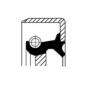 Уплотняющее кольцо, ступенчатая коробка передач; Уплотняющее кольцо вала, автоматическая коробка передач CORTECO 01031969B