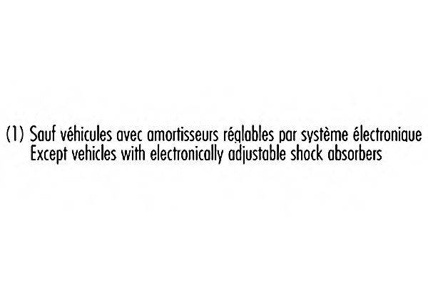 Амортизатор RECORD FRANCE 004013