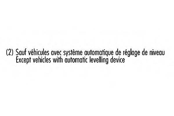 Амортизатор RECORD FRANCE 004123